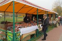 Выставка-продажа «Золотой мастер» 2013